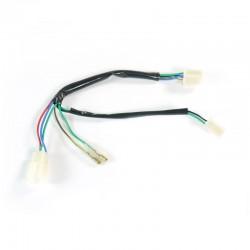 Faisceau électrique standard CDI une broche